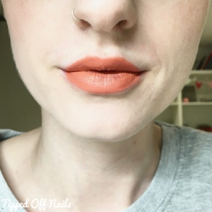 MUA Velvet Lip Lacquer Full Collection Swatches & Review Passion