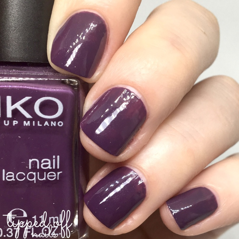 Kiko Milano Nail Lacquer Swatch 379 - Egg Plant