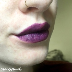 Collection Velvet Kiss Blackberry Swatch