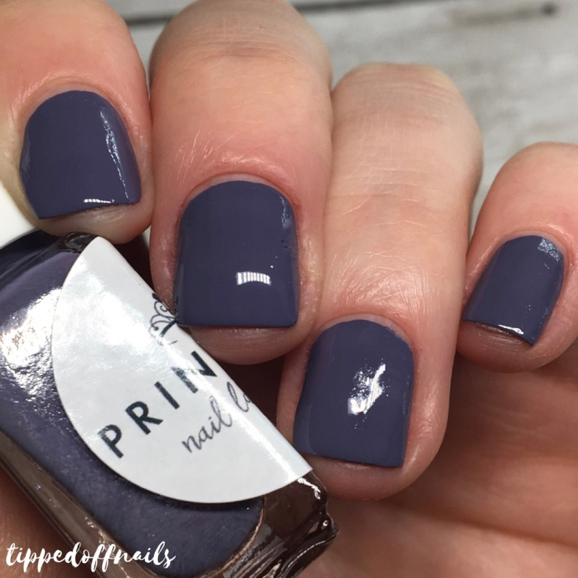 Princess Nail Lacquer Autumn 2017 Collection Swatches Crisp & Cool