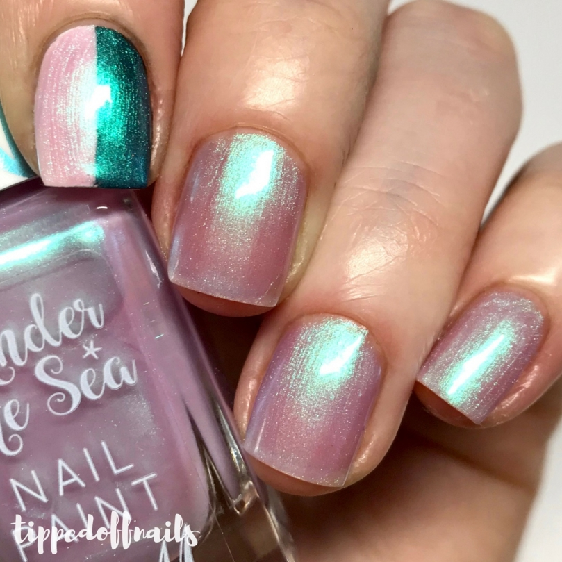 Barry M Under The Sea - Jellyfish