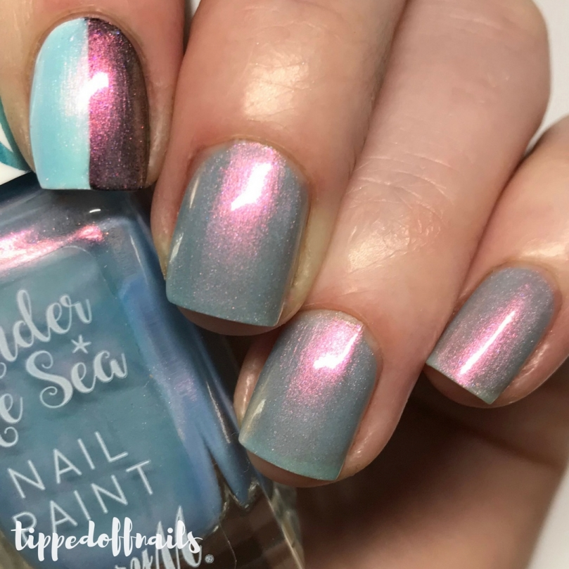 Barry M Under The Sea - Butterflyfish