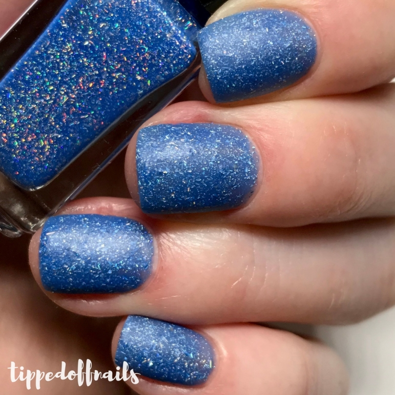 For Your Nails Only: Oceanic Collection - Scotia Swatches